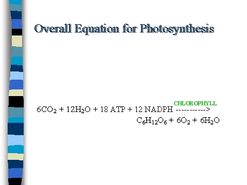 equation of photosythesis (7) write out the general summary equation for photosynthesis (2) name the by-products from photosynthesis (2)give another name for the light reaction.