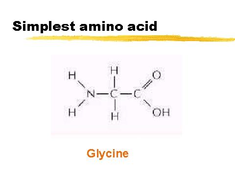 simplest amino acid